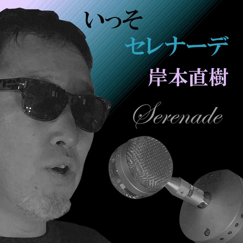 serenade (Cover)