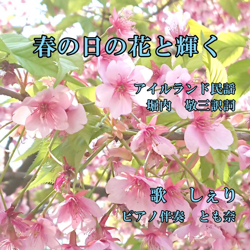 春の日の花と輝く