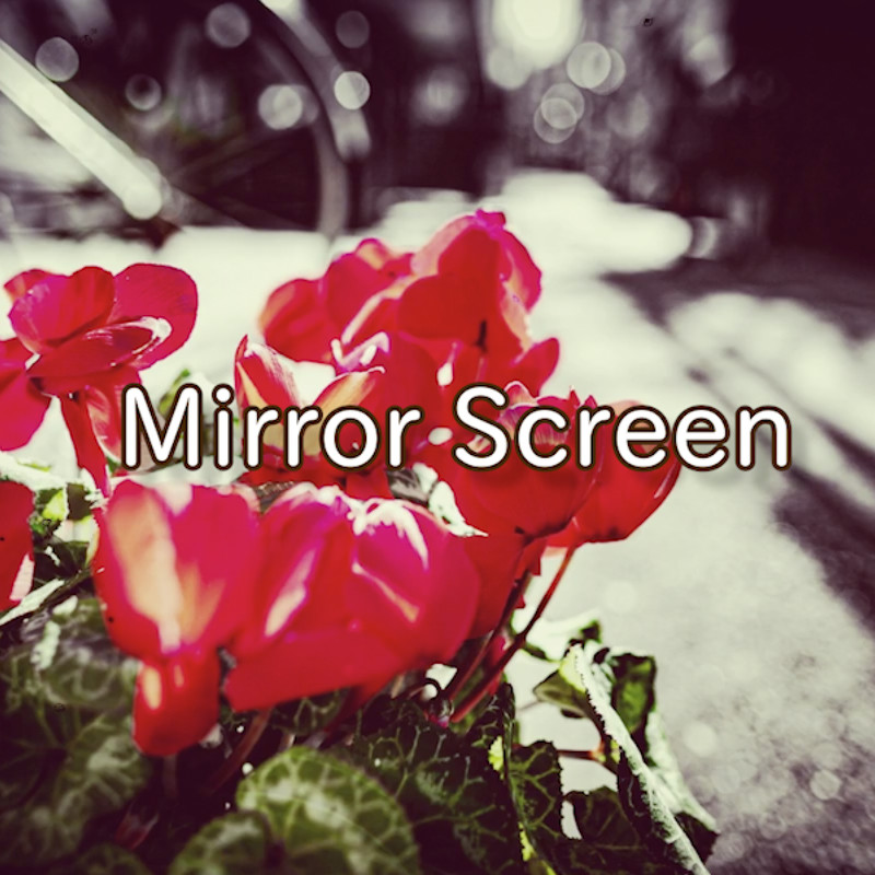 Mirror screen
