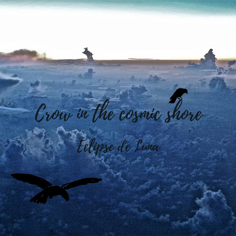 Crow in The Cosmic Shore