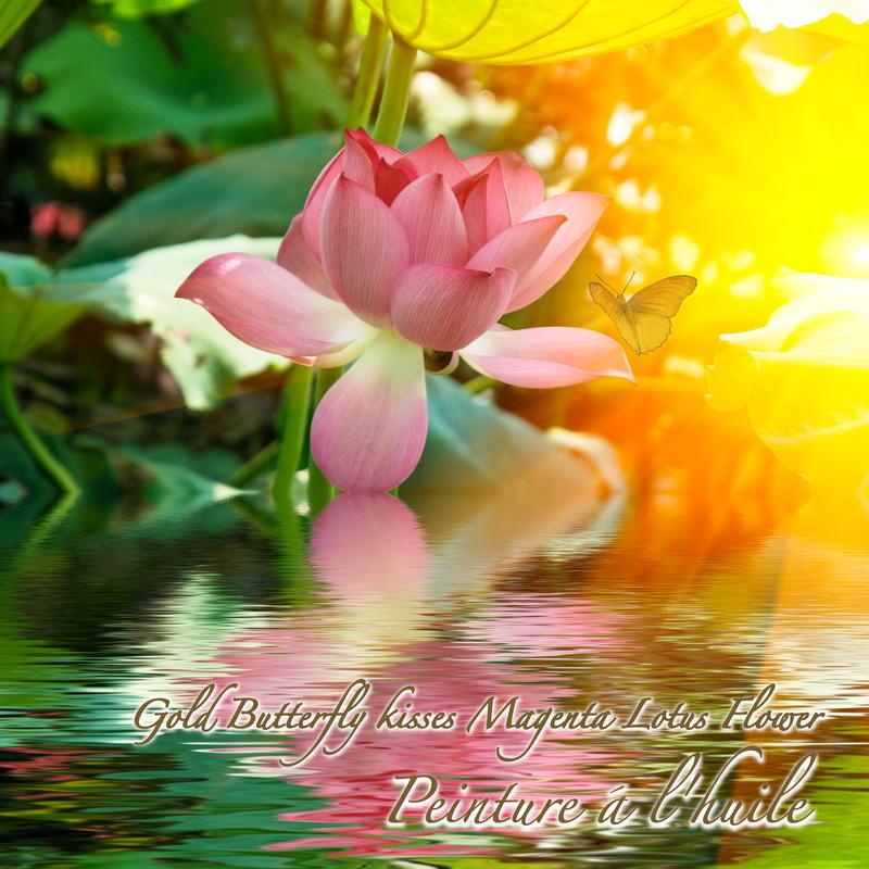 Gold Butterfly kisses Magenta Lotus Flower