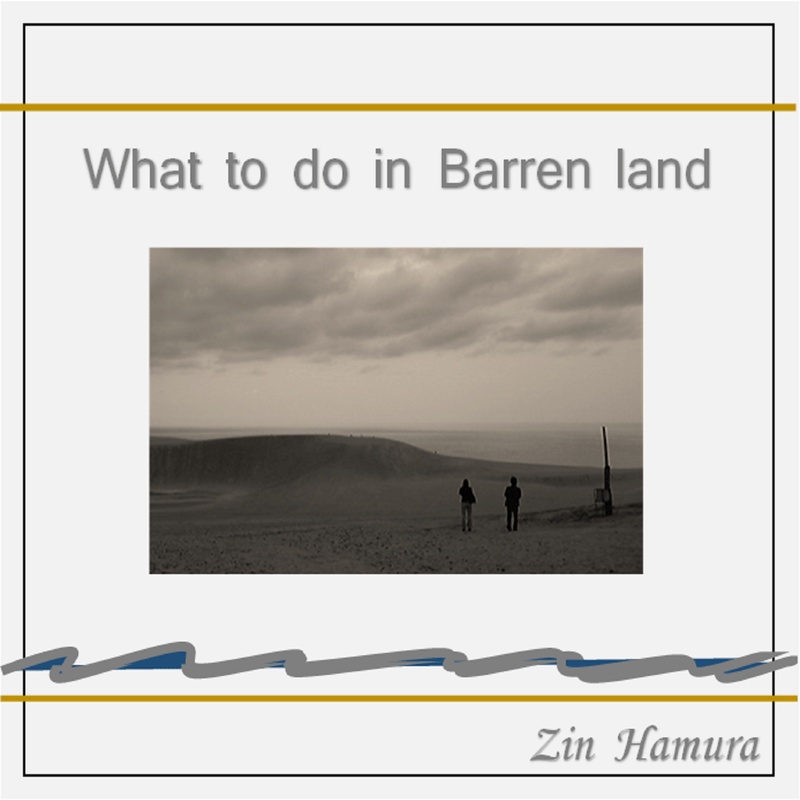 What to do in Barren land