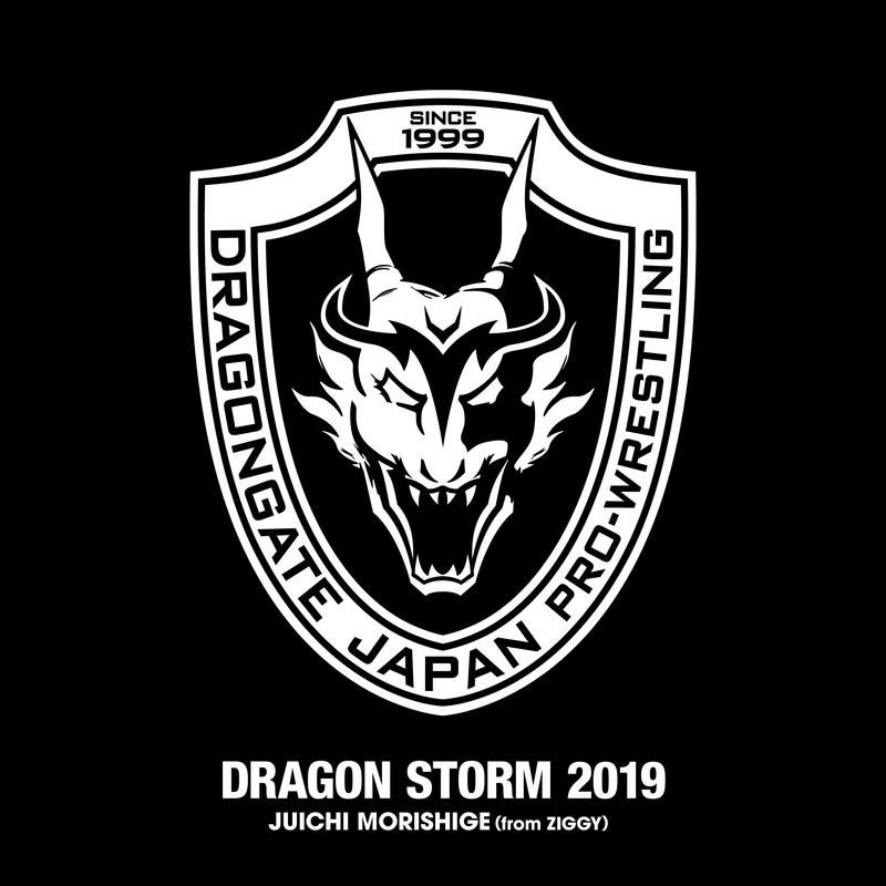 DRAGON STORM 2019