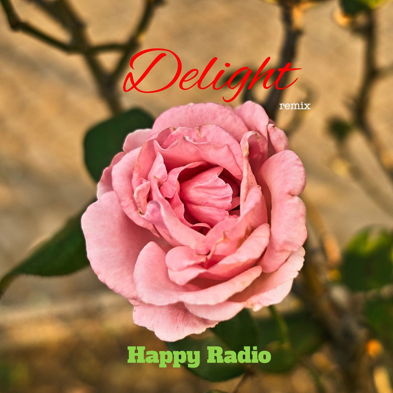 Delight (remix)