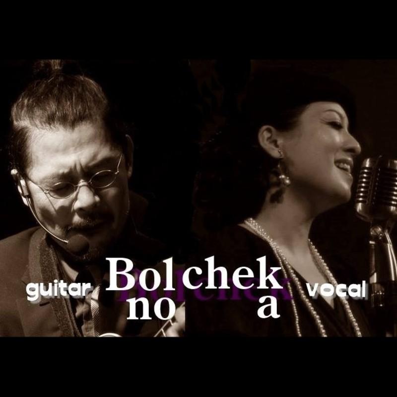Bolchek