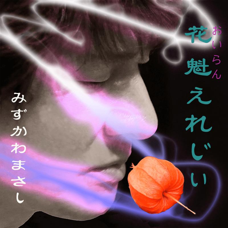 花魁えれじぃ