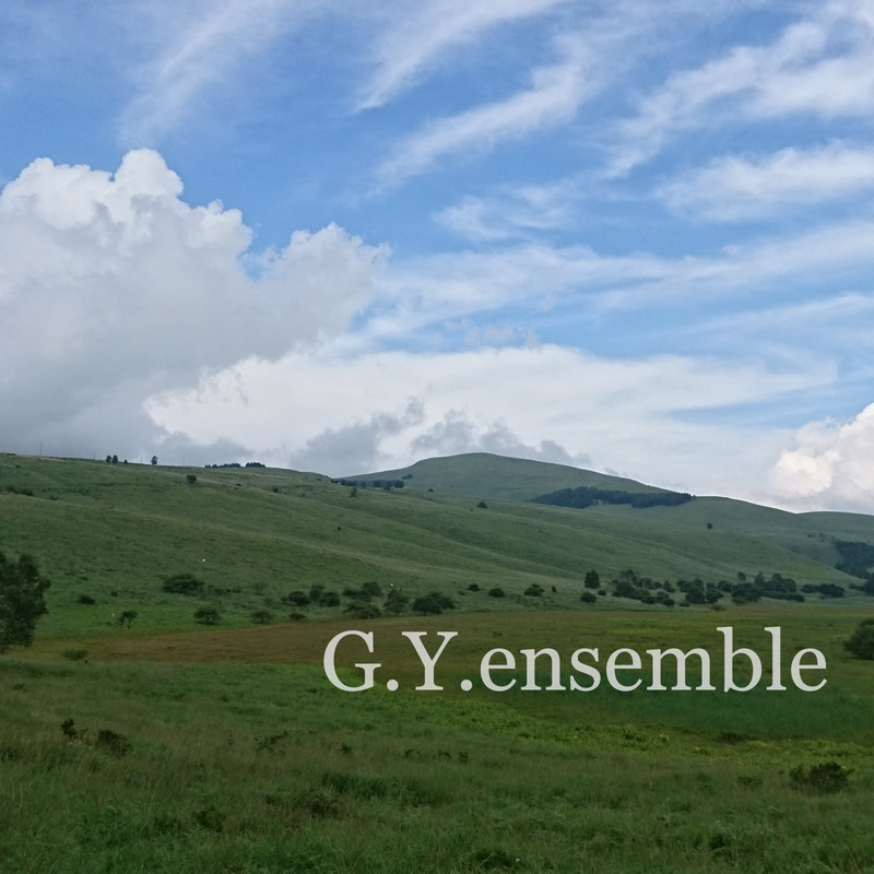 G.Y.ensemble