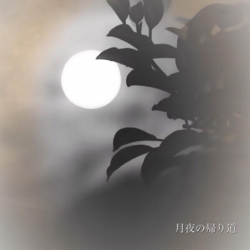 月夜の帰り道