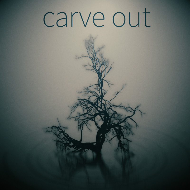 carve out