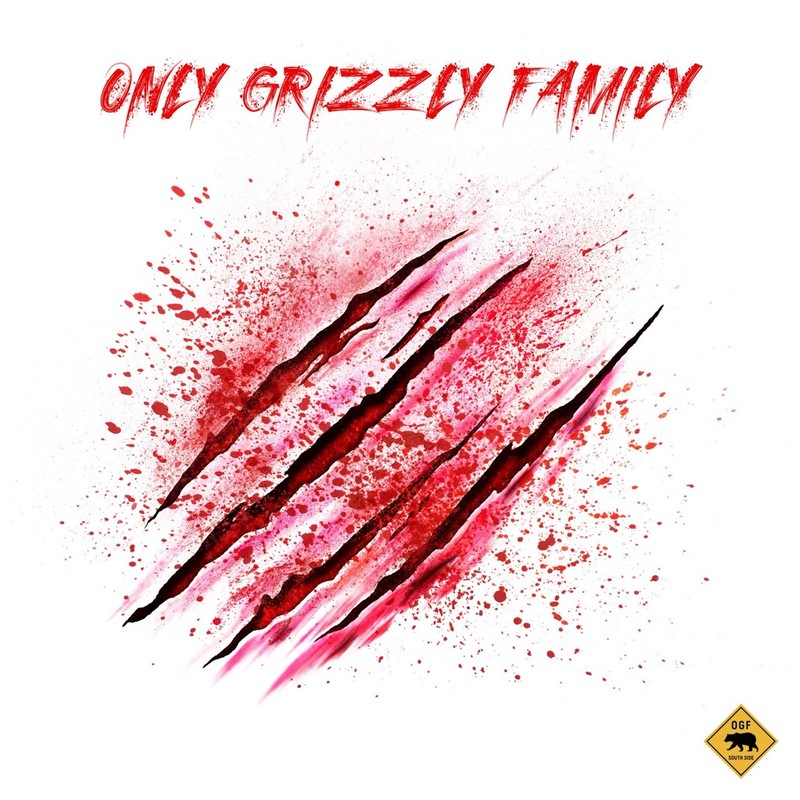 Only Grizzly Family