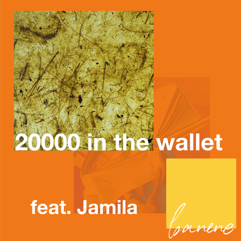 20000 in the wallet (財布に2万 banene Remix) [feat. Jamila]