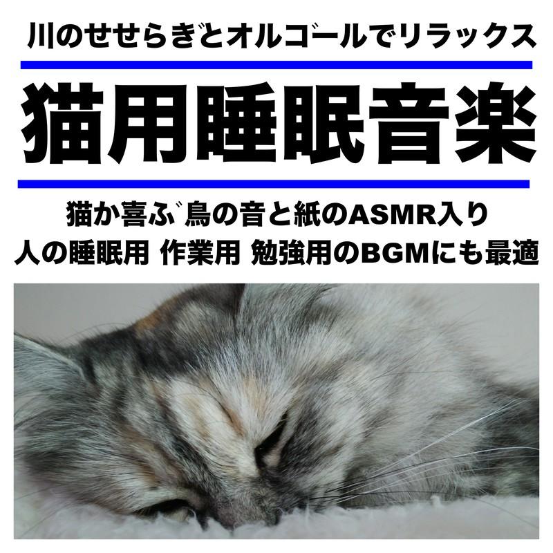 川のせせらぎとオルゴールでリラックス 猫用睡眠音楽 猫が喜ぶ 鳥の音と紙のASMR入り 人の睡眠用 作業用 勉強用のBGMにも最適
