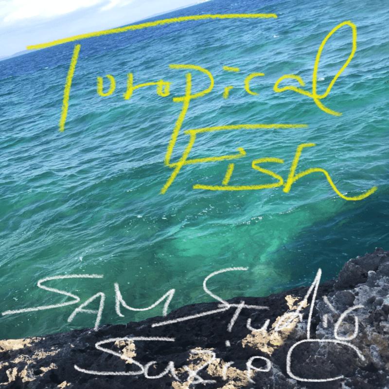 Tropical Fish (feat. SUZIE C)
