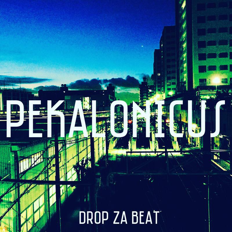 Drop Za Beat (2020mix)