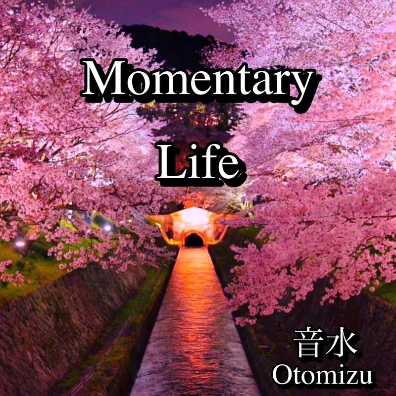 Momentary Life