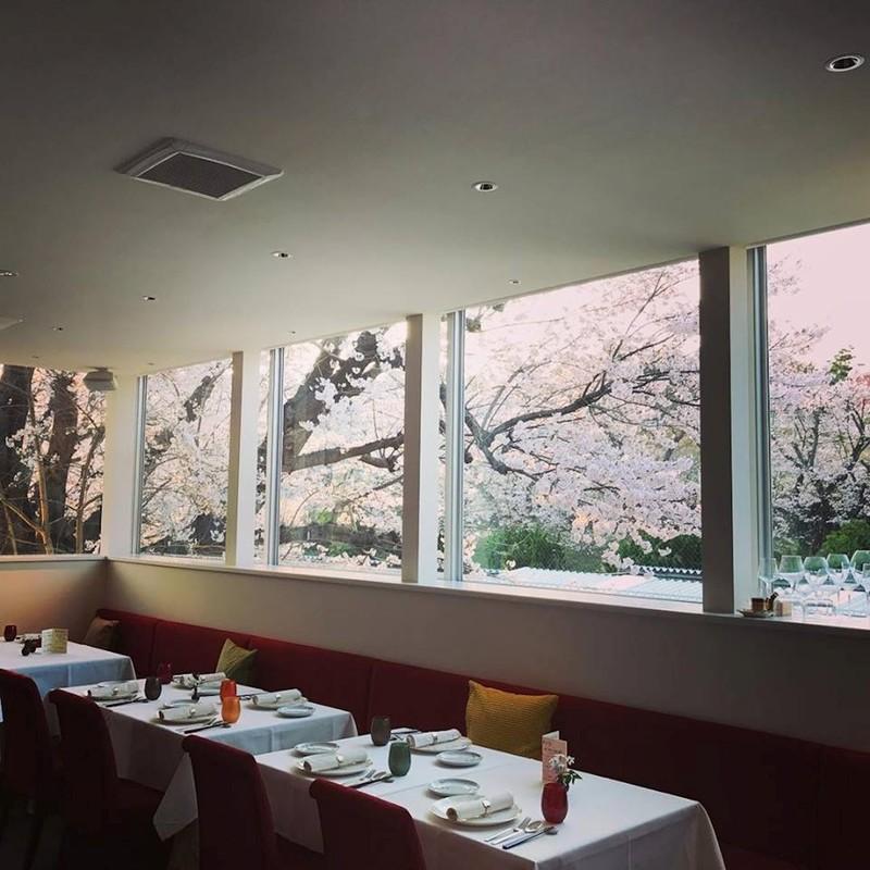 桜のレストラン