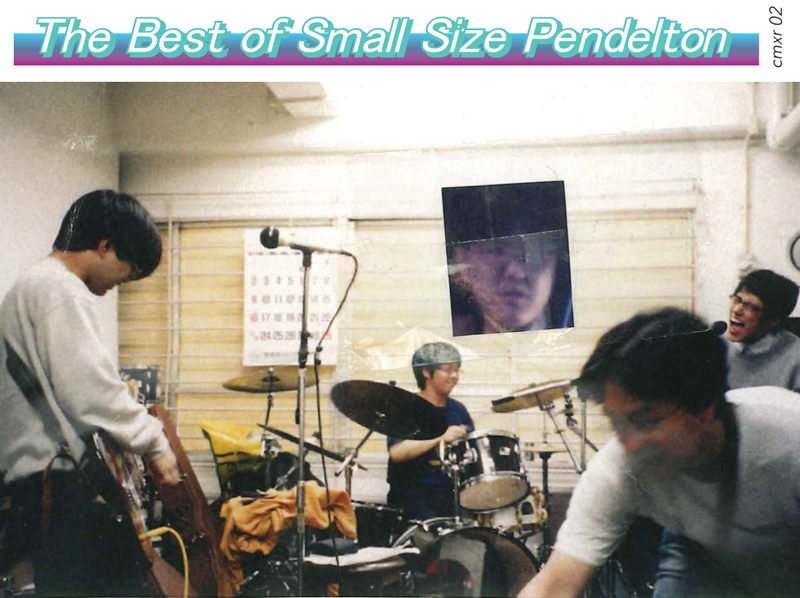Small Size Pendelton