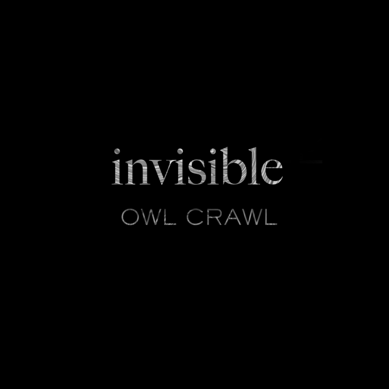 invisible(録れコン Edition)
