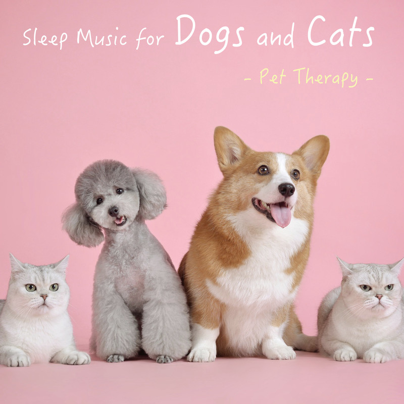 Sleep Music for Dogs and Cats - Pet Therapy -