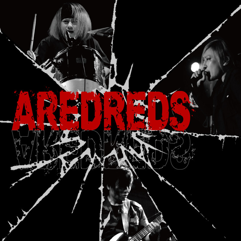 AREDREDS