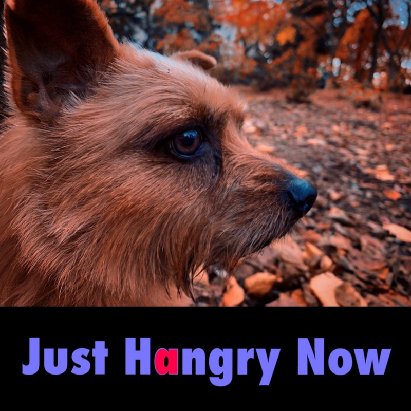 Just Hangry Now