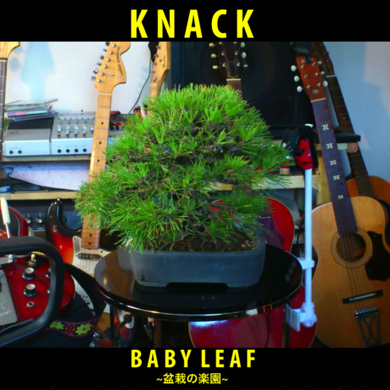 BABY LEAF -bonsai no rakuen-
