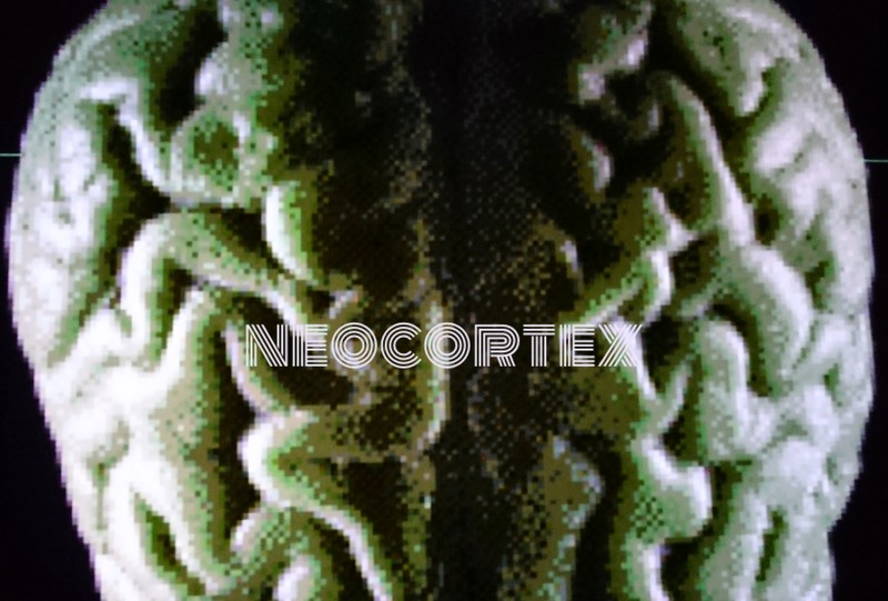 NEOCORTEX-neo