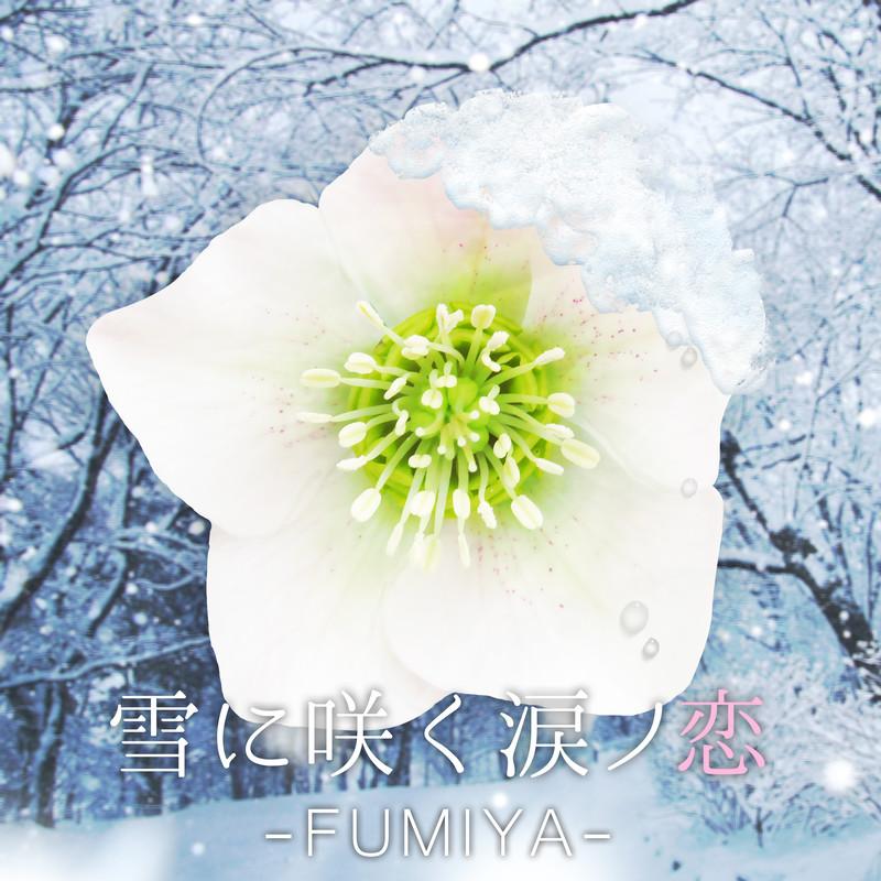 雪に咲く涙ノ恋