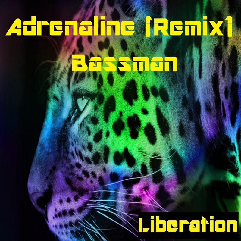 Adrenaline (Remix)