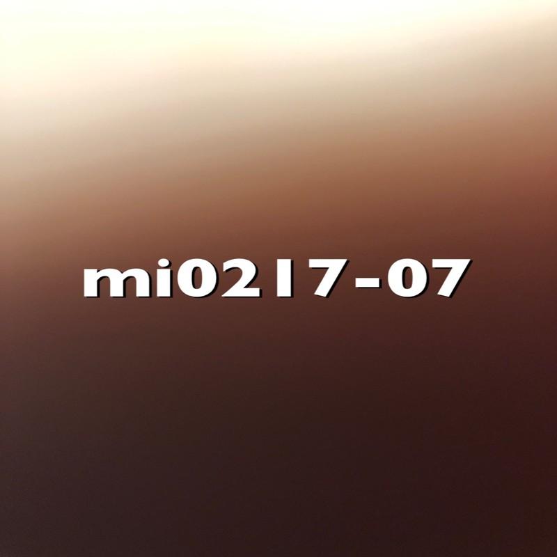 mi0217-07