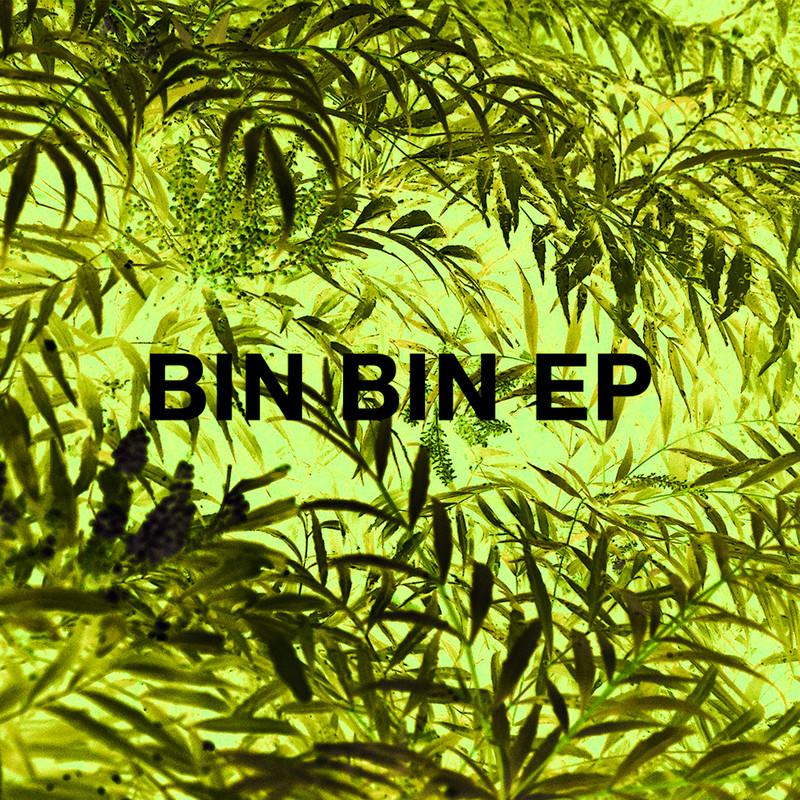 BIN BIN