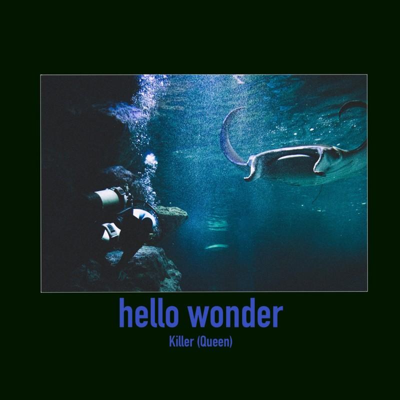 hello wonder