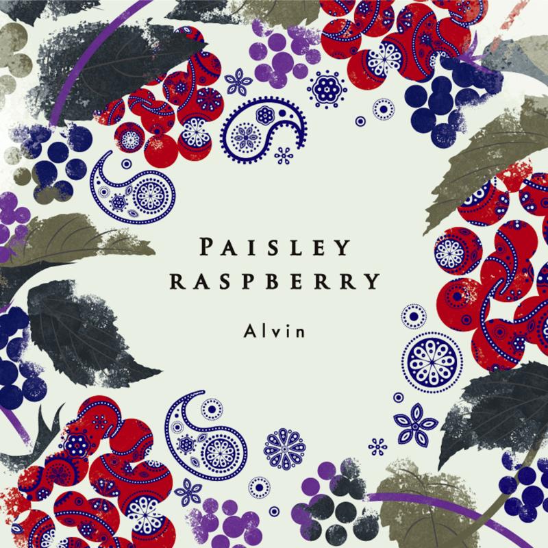 Paisley Raspberry