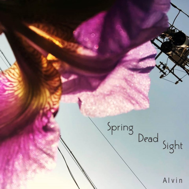 Spring Dead Sight