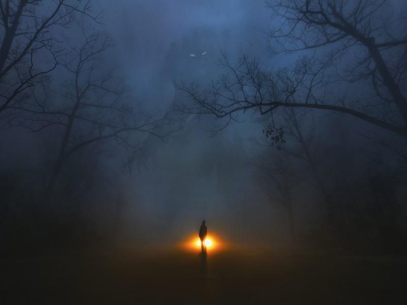 Fog Noise