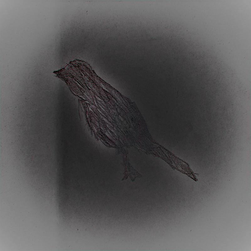 To a Little Blue Bird (instrumental)
