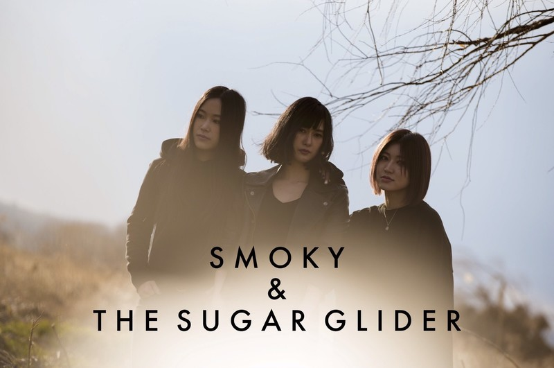 SMOKY & THE SUGAR GLIDER