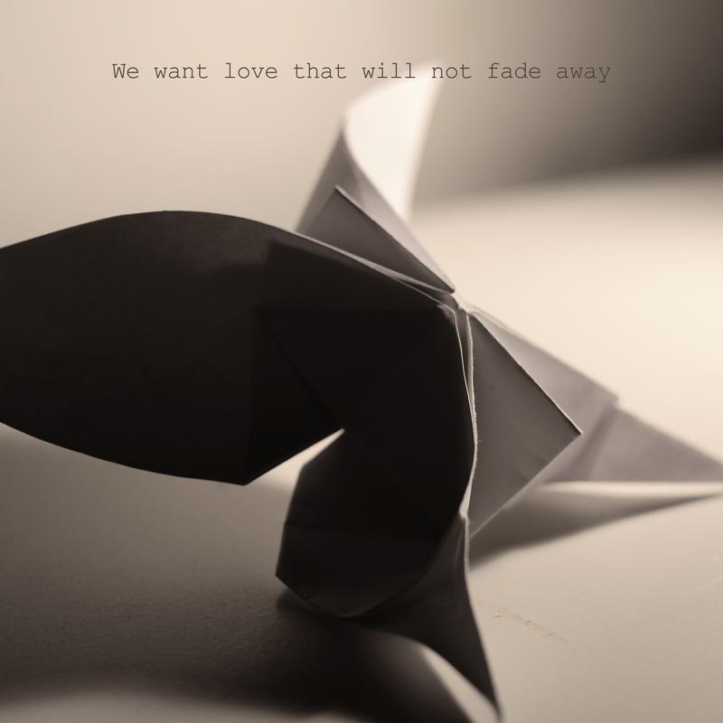 We want love that will not fade away (feat. Shingo Suzuki)