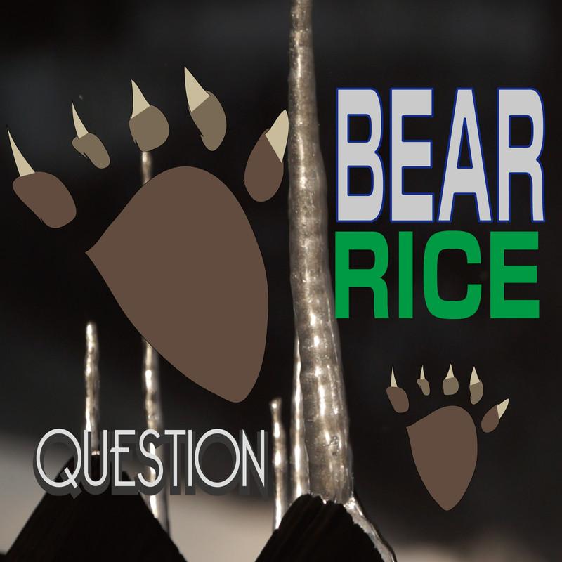 BEAR RICE