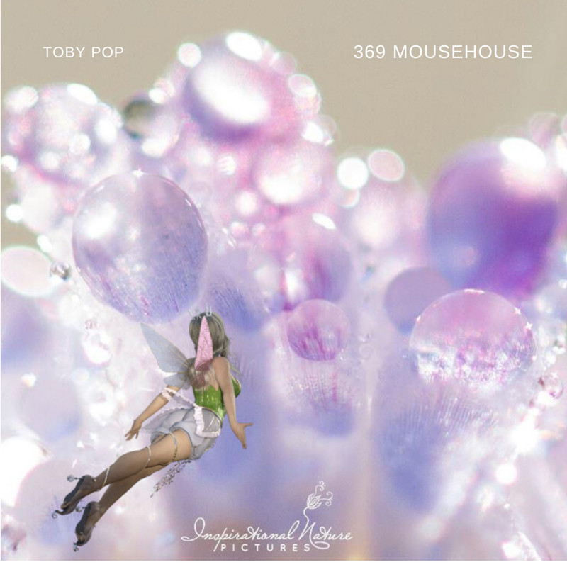 369 mousehouse