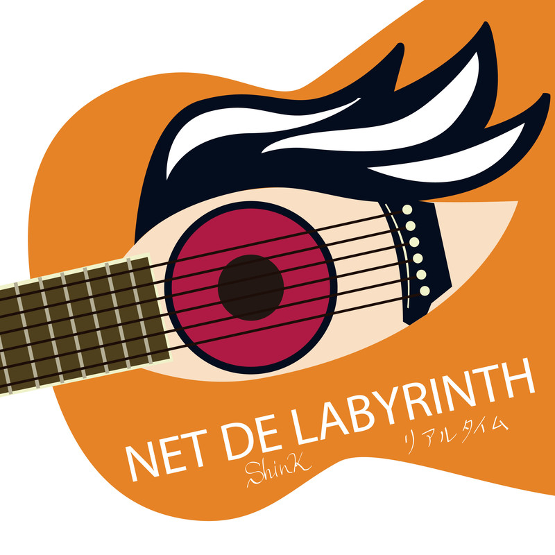 NET DE LABYRINTH