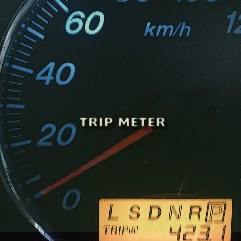TRIP METER (feat. Seba)