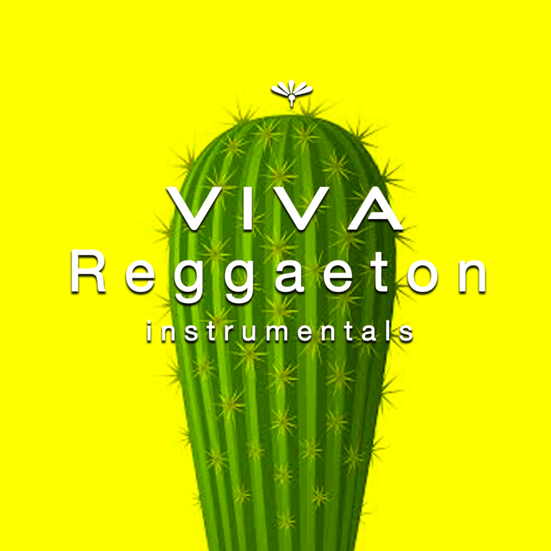 Viva Reggaeton Instrumentals 2019 -Latin Dance Music Playlist- vol.5