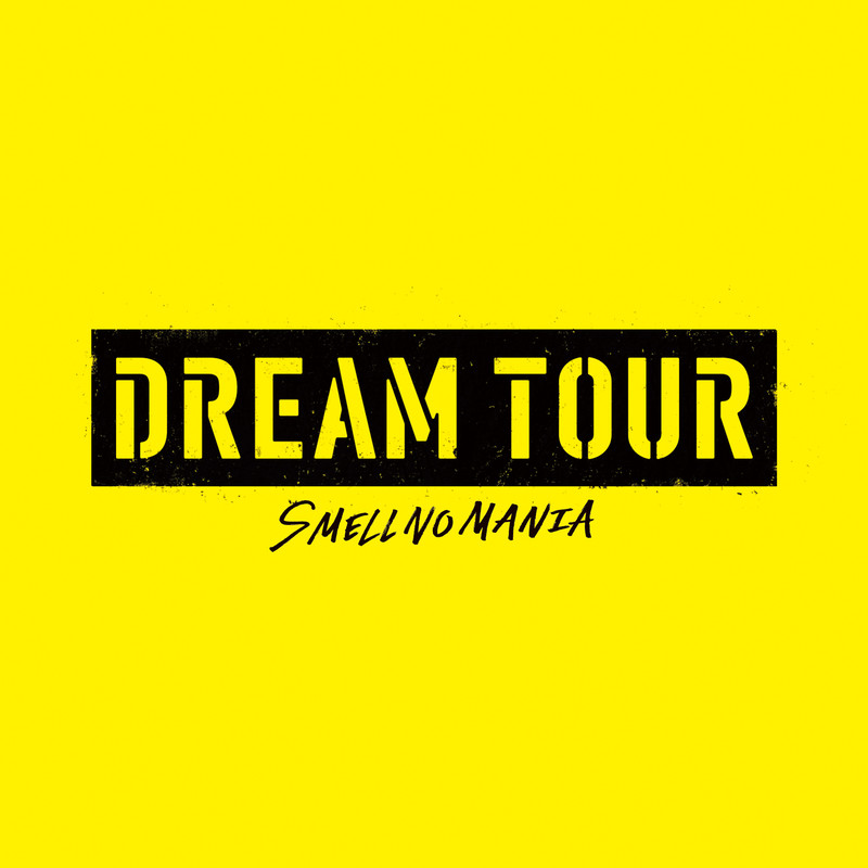 DREAM TOUR