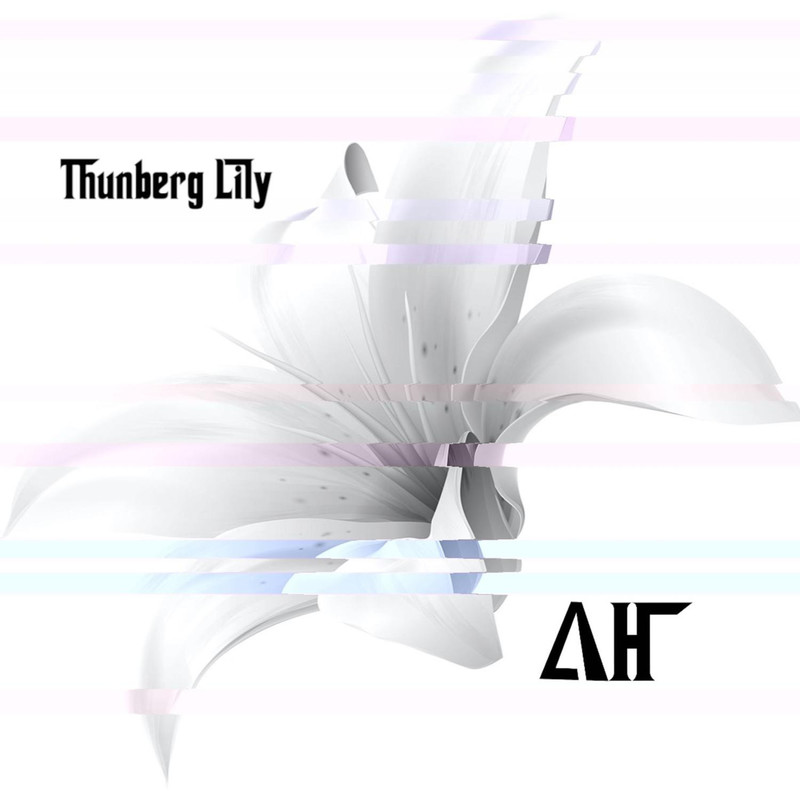 Thunberg Lily