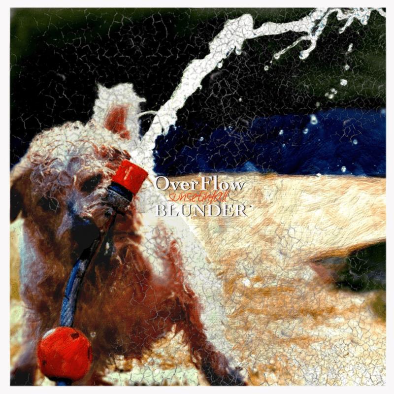 Over Flow / BLUNDER