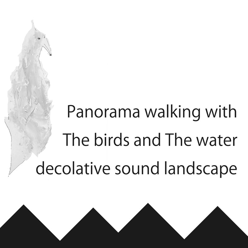 Panorama walking with The birds and The water decolative sound landscape