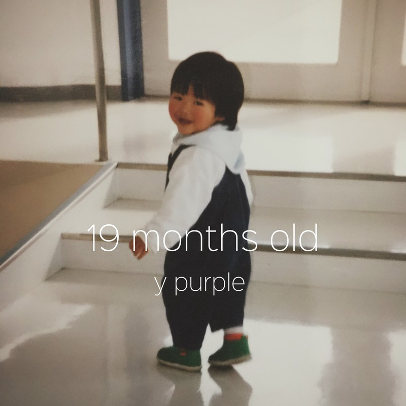 19 months old