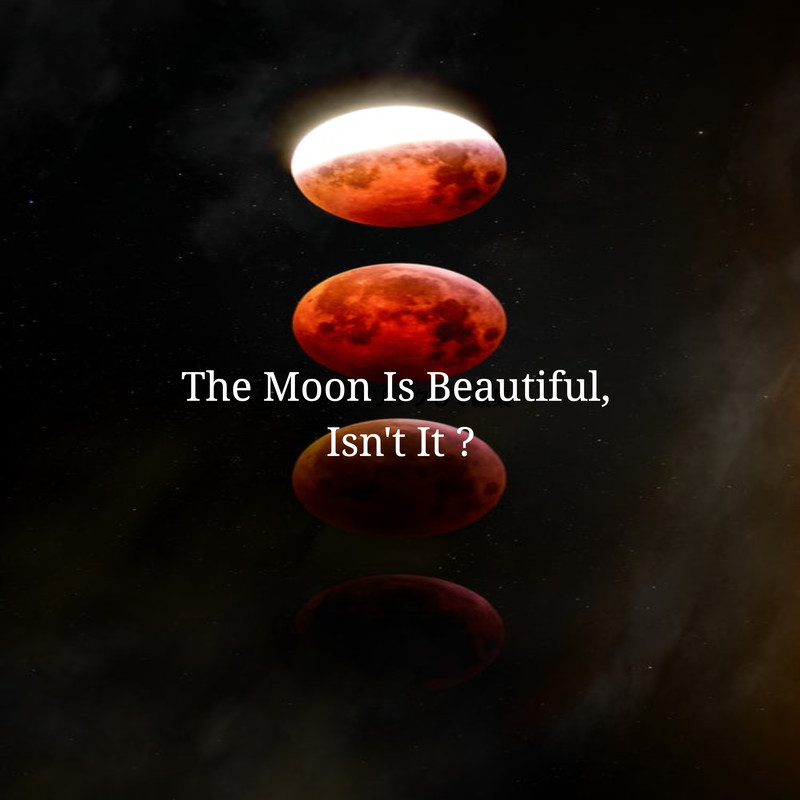 The Moon Is Beautiful, Isn