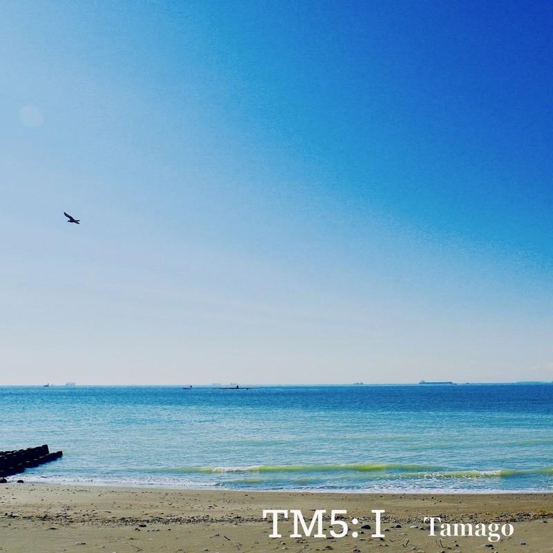 TM5:1